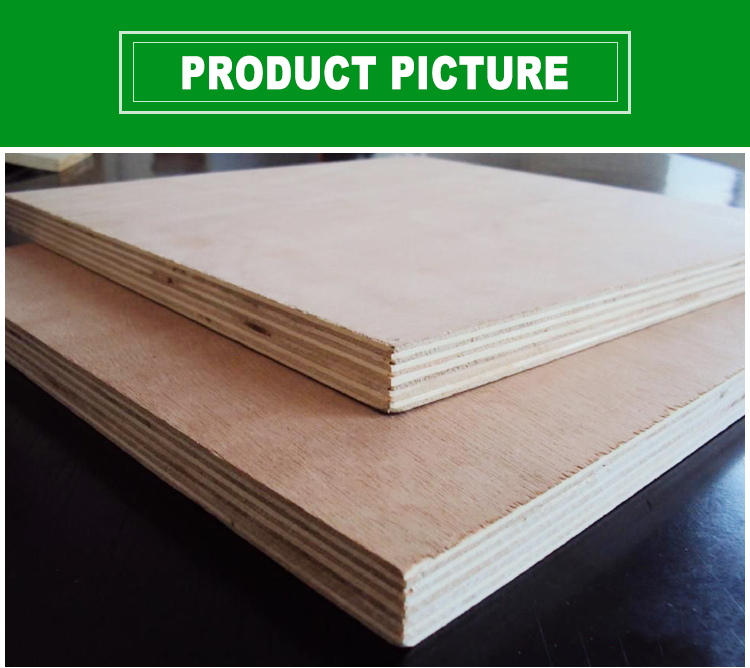 poplar commercial plywood 3-18mm plywood(图1)